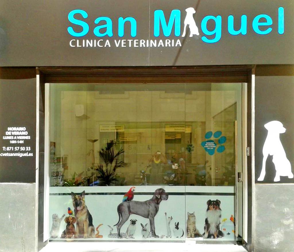 Clinica Veterinaria San Miguel Veterinarios Animales