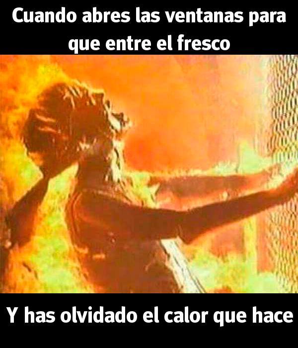 Humor En Las Redes Sociales Para Sobrellevar El Calor
