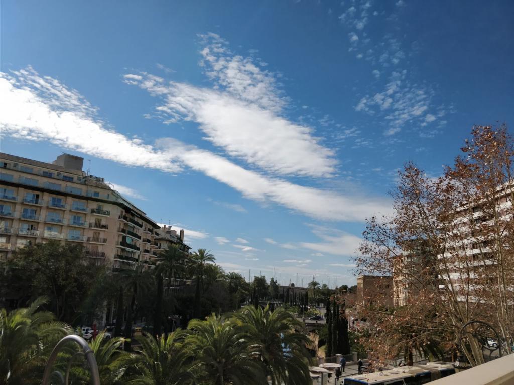 Cielo de Palma