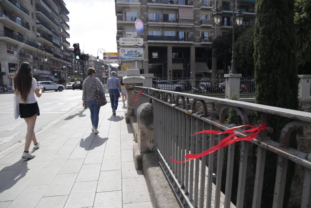 palma lazos puente jaime lll foto morey
