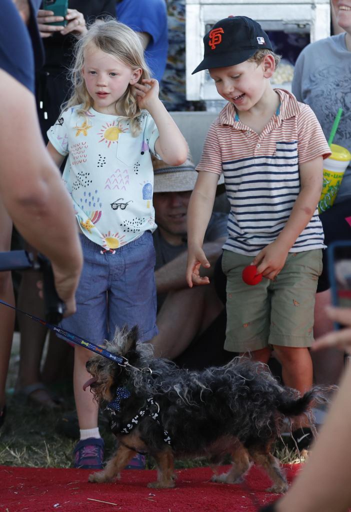 World's Ugliest Dog Contest