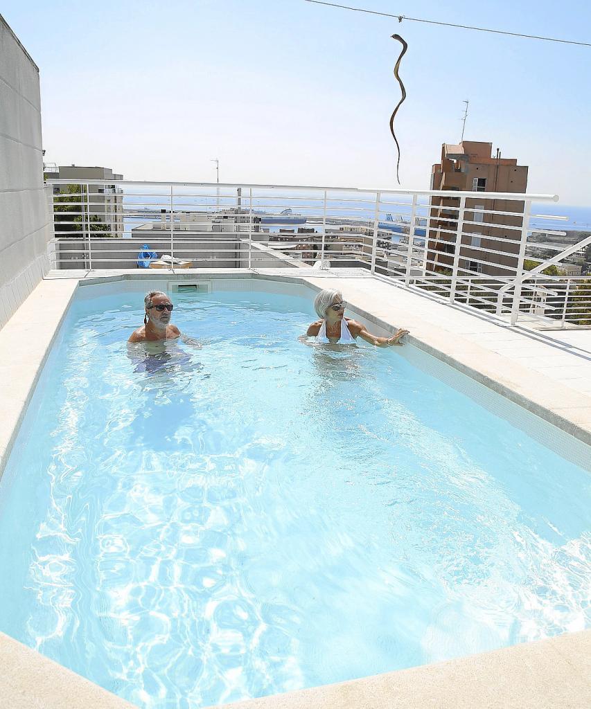 palma discreto piscina gey rabassa foto joan torres