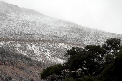 La nieve ha llegado al Puig Major.