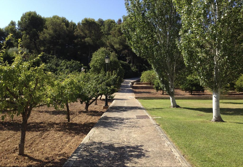 Los jardines de marivent estar n abiertos al p blico a for Jardines de marivent