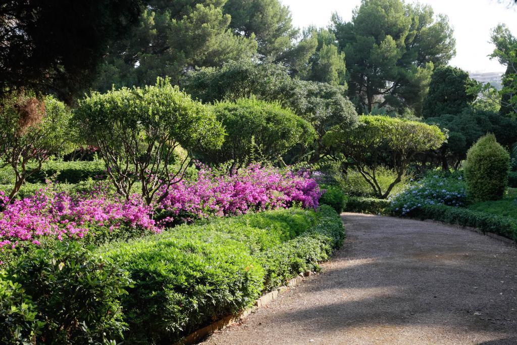 Marivent abrir al p blico sus jardines seguramente for Jardines mallorca
