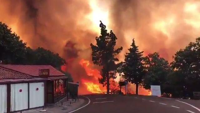 Investigan a un ganadero como presunto autor del incendio de la cumbre de Gran Canaria